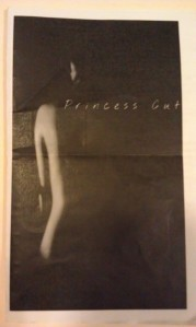 Princess Cut program